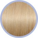 Perfect Curly Line DB2/ Licht Goudblond