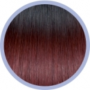 Flat Ring-On Ombre Line 1B/530 Black/ Burgundy